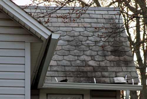roof - upper
