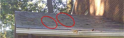 Slate Roof with Moss