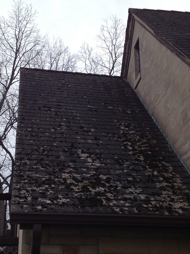 Slate Roof Central Message Board Cleaning Slate Roof With